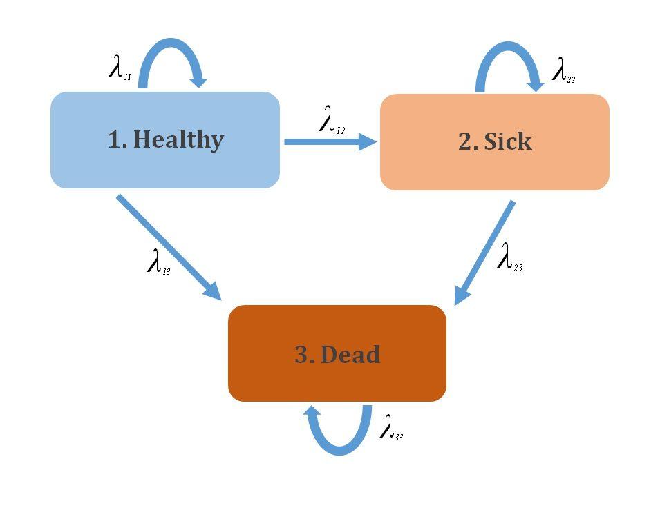 Discrete Time Markov Models